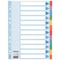 """ESSELTE Regiszter, karton, A4, 12 részes, írható előlappal, ESSELTE """"Standard"""", színes"""