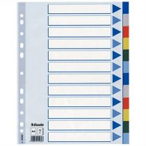 ESSELTE Regiszter, műanyag, A4, 12 részes, ESSELTE