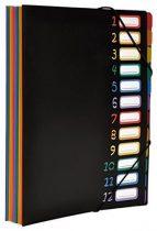 """VIQUEL Irattartó mappa, gumis, 12 részes, VIQUEL """"Rainbow Class"""", fekete"""