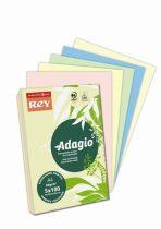 """REY Másolópapír, színes, A4, 80 g, 5x100 lap, REY """"Adagio"""", pasztell mix"""